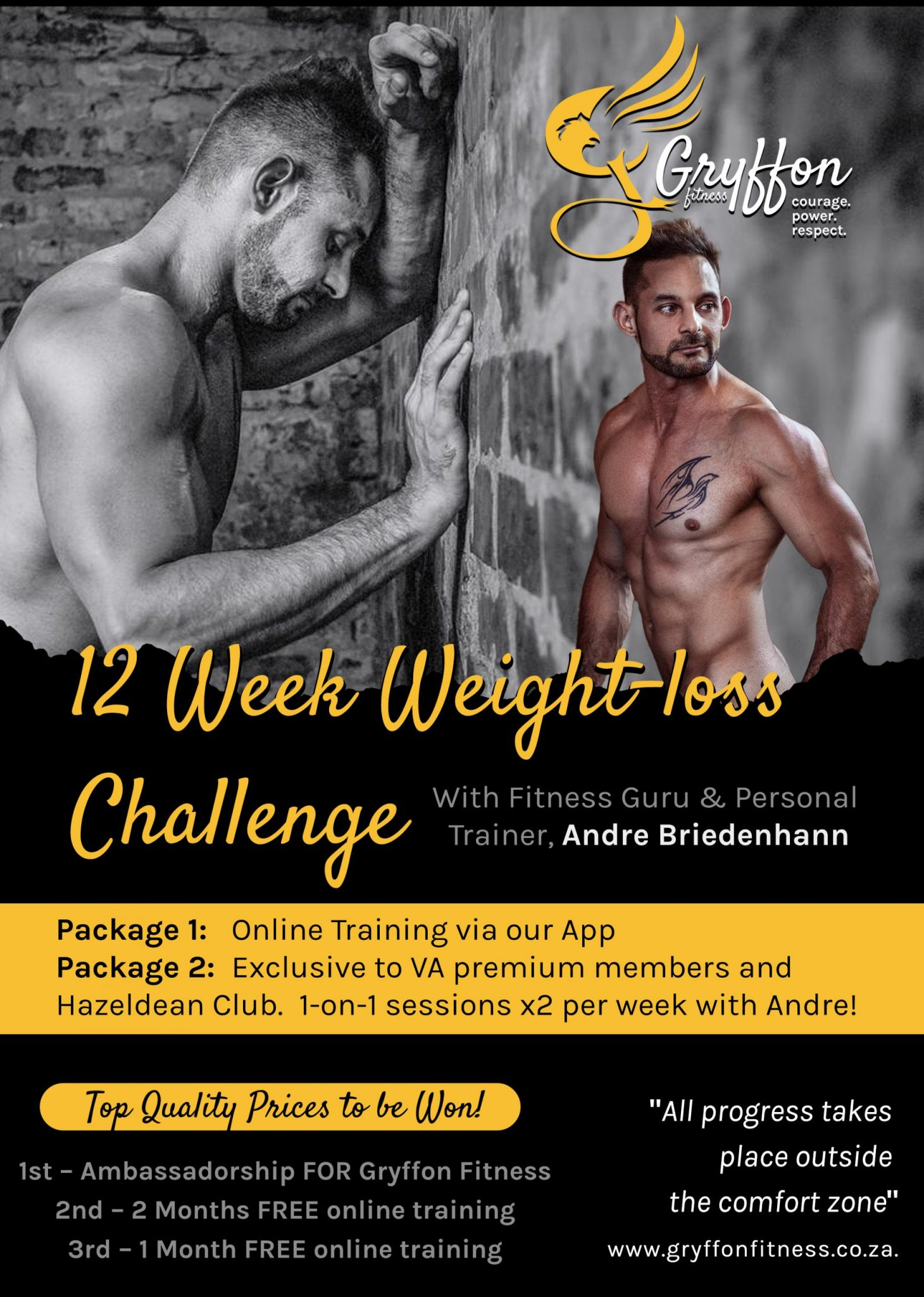 Griffon Fitness Flyer 1